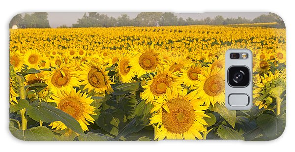 Sunshine Flower Field Galaxy Case