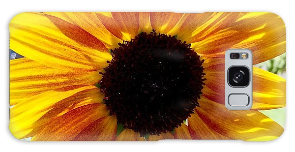 Sunshine Sunflower Galaxy Case by Russell Keating