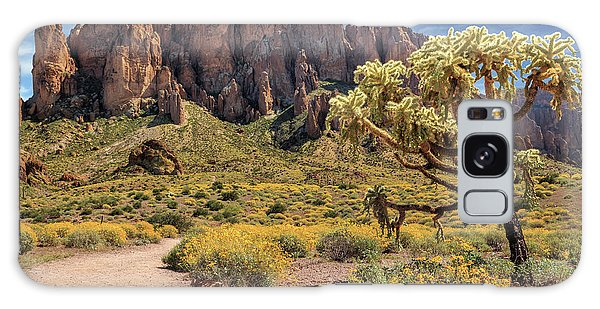 Superstition Mountain Cholla Galaxy Case by James Eddy
