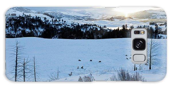 Surise Elk Herd Galaxy Case