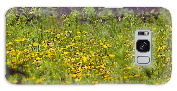 Susans In A Green Field Galaxy Case