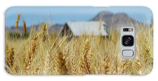 Sutter Buttes Wheat  Galaxy Case by Pamela Patch