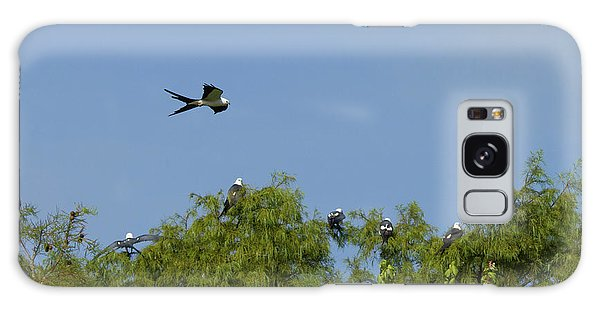 Swallow-tailed Kite Flyover Galaxy Case
