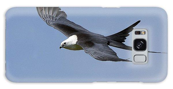 Swallow-tailed Kite Galaxy Case