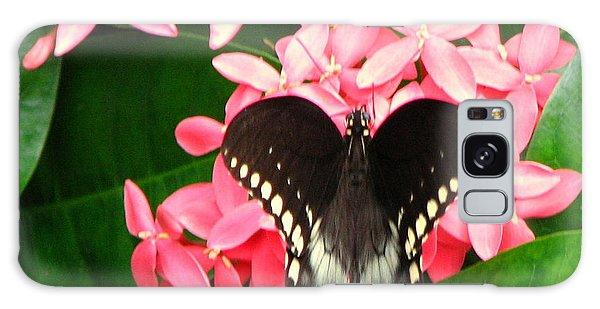 Swallow-wing Butterfly Galaxy Case