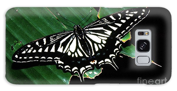 Swallowtail Butterfly- Close Galaxy Case