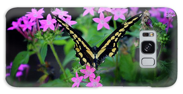 Swallowtail Butterfly Rests On Pink Flowers Galaxy Case by Toni Hopper