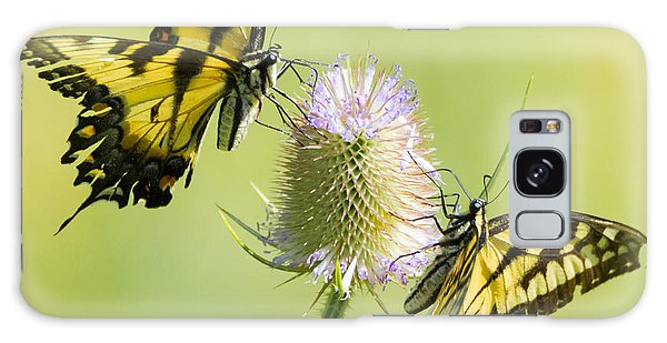 Swallowtails On Thistle  Galaxy Case