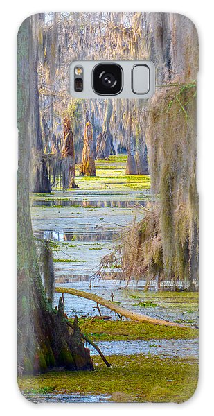 Swamp Curtains In February Galaxy Case
