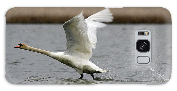 Swan During Take Off Galaxy Case