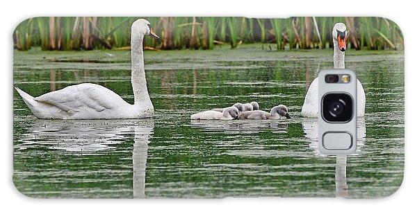 Swan Family Galaxy Case