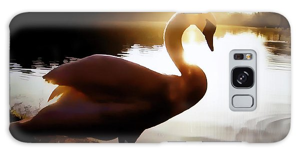 Swan In Evening Sun Galaxy Case by Linda Phelps