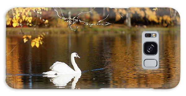 Swan On A Lake Galaxy Case by Teemu Tretjakov