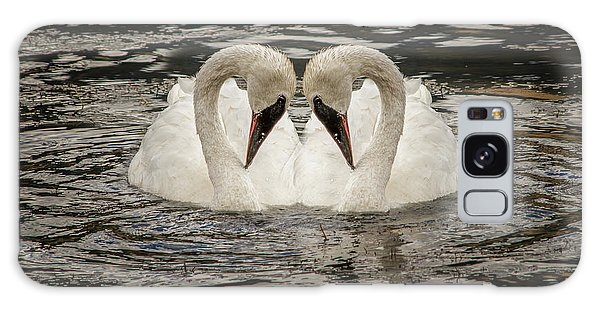 Swan Times Two Galaxy Case by Mary Hone