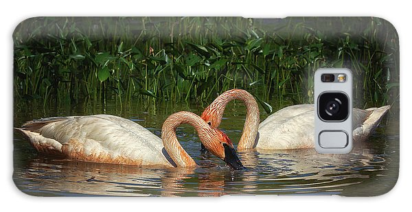 Swans In A Pond  Galaxy Case