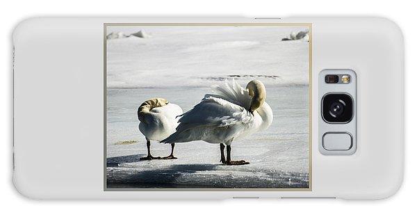 Swans On Ice Galaxy Case