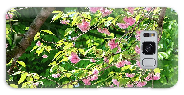 Sweeping Cherry Blossom Branches Galaxy Case