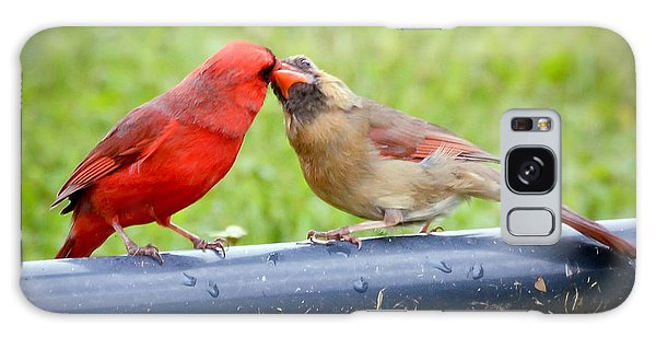 Sweet Cardinal Couple Galaxy Case