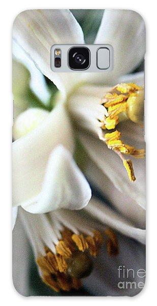 Sweet Fragrance 2 Galaxy Case