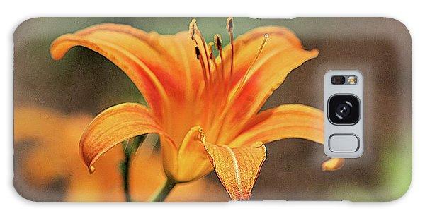 Sweet Lilly In Orange Galaxy Case