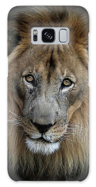Sweet Male Lion Portrait Galaxy Case