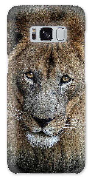 Sweet Male Lion Galaxy Case