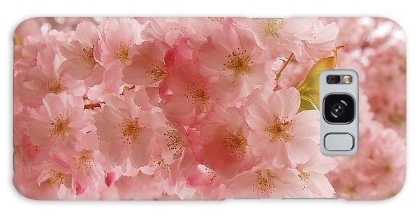 Sweet Pink- Holmdel Park Galaxy Case