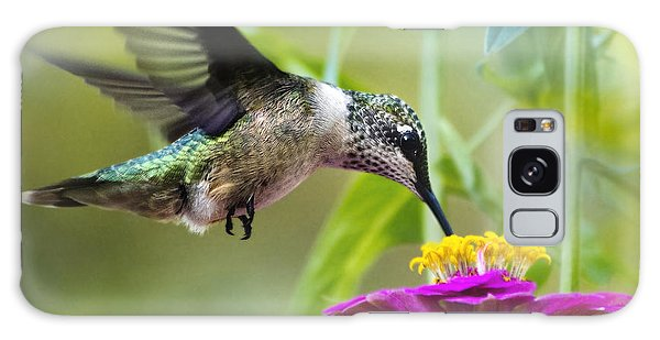 Sweet Success Hummingbird Square Galaxy Case