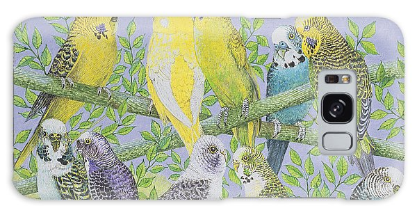 Parakeet Galaxy Case - Sweet Talking by Pat Scott