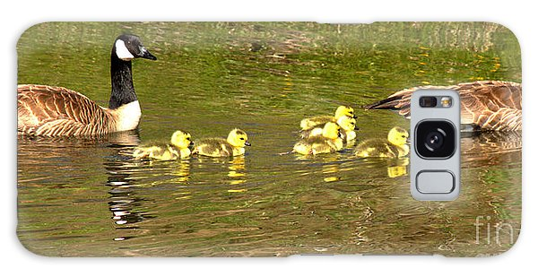 Gosling Galaxy Case - Swimming With The Youngsters In Teton by Adam Jewell