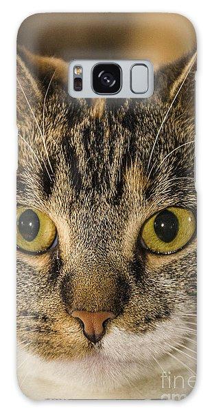 Symmetrical Cat Galaxy Case