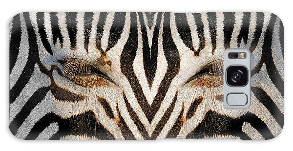 Synthetic Zebra Galaxy Case