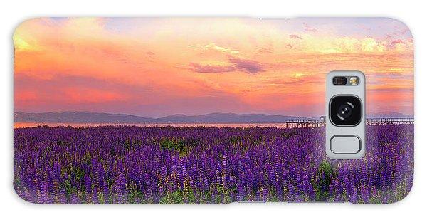 Tahoe City Lupine Sunset By Brad Scott Galaxy Case
