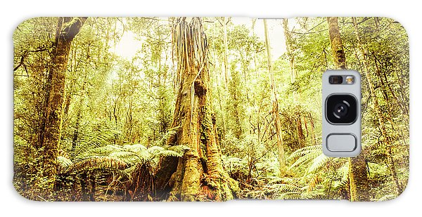 Ecosystem Galaxy Case - Tahune Forest Reserve by Jorgo Photography - Wall Art Gallery