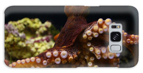 Tako Not Taco Hawaiian Octopus Galaxy Case