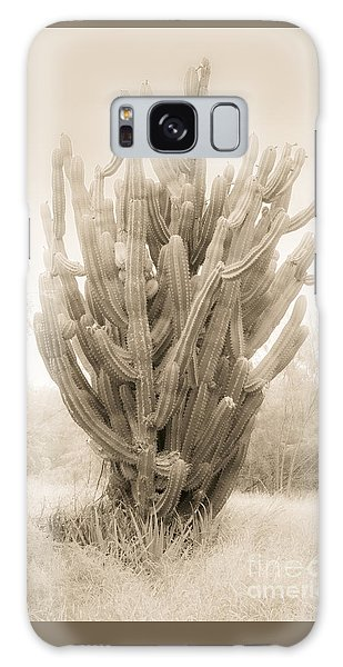 Tall Cactus In Sepia Galaxy Case