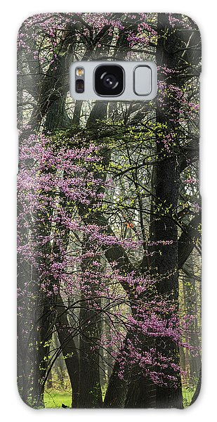 Tall Red Buds In Spring Galaxy Case by Joni Eskridge