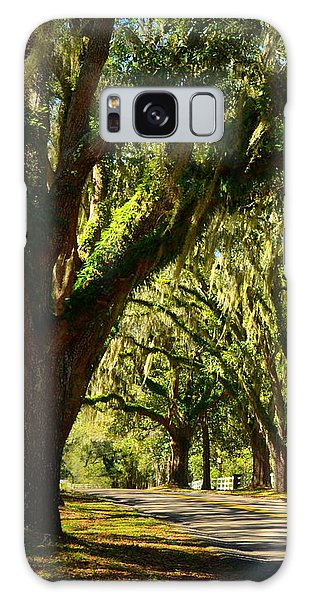 Tallahassee Canopy Road Galaxy Case by Carla Parris