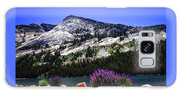 Tanaya Lake Wildflowers Yosemite Galaxy Case