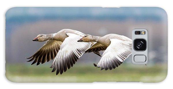 Goose Galaxy Case - Tandem Glide by Mike Dawson