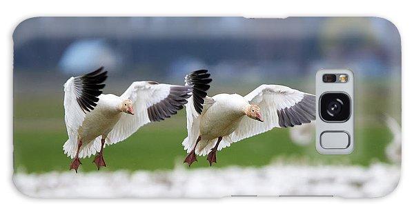 Goose Galaxy Case - Tandem Landing  by Mike Dawson