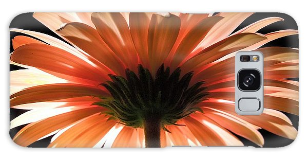 Tangerine Gerber Daisy Galaxy Case