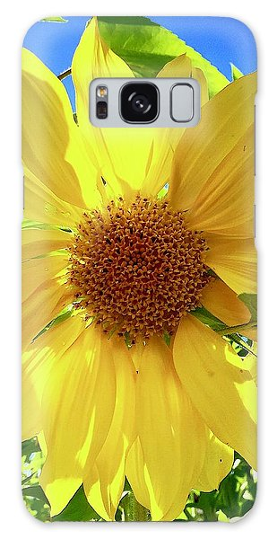 Tangled Sunflower Galaxy Case