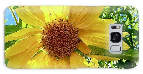Tangled Sunflower Galaxy Case