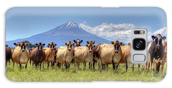 Taranaki Cows Galaxy Case