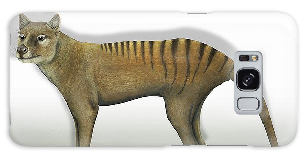 Tasmanian Tiger-thylacinus Cynocephalus-tasmanian Wolf-lobo De Tasmania-tasmanian Loup-beutelwolf    Galaxy Case