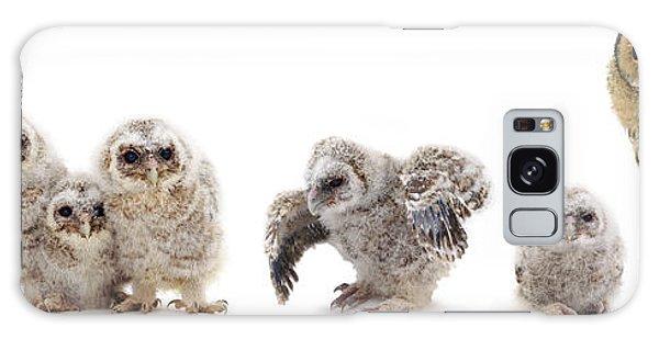 Tawny Owl Family Galaxy Case