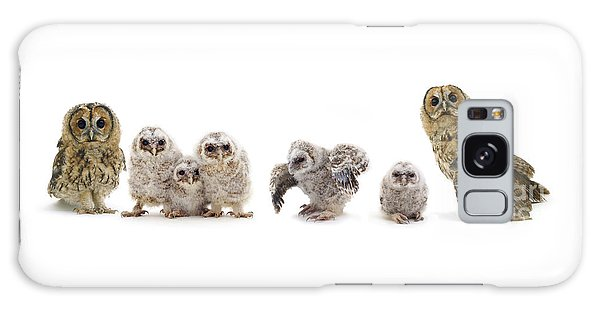 Tawny Owl Family Galaxy Case