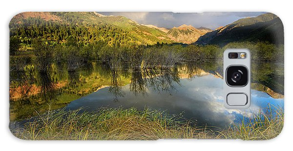 Telluride Valley Floor Galaxy Case