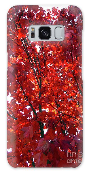 Tennessee Trees 3 Galaxy Case by Jeanne Forsythe